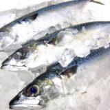 【アジが釣りたい☆】佐賀呼子漁港でのナイトアジング【佐賀釣り】